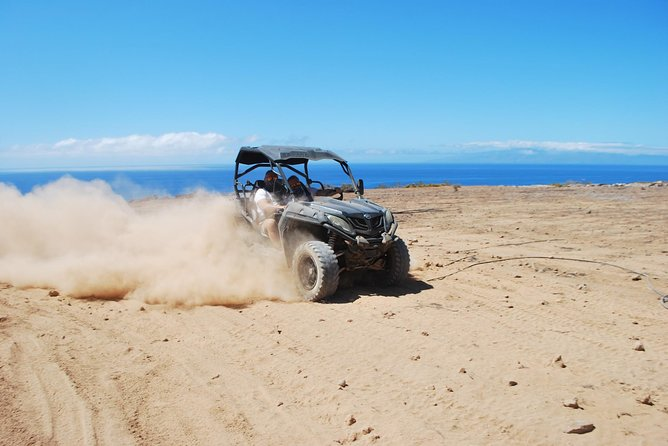 "BUGGY TRIP ""COASTAL RUSH"", off-road safari adventure! PLAYA DE LAS AMERICAS photo 14"