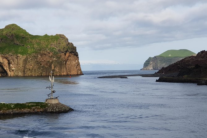 Vestmannaeyjar private tour - Puffin colony and so much more