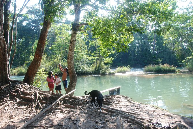 Full Day Tour: Wonders of Agua Azul Cascades and Palenque Ruins photo 10