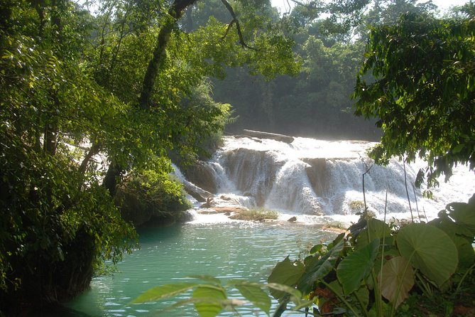 Full Day Tour: Wonders of Agua Azul Cascades and Palenque Ruins photo 4