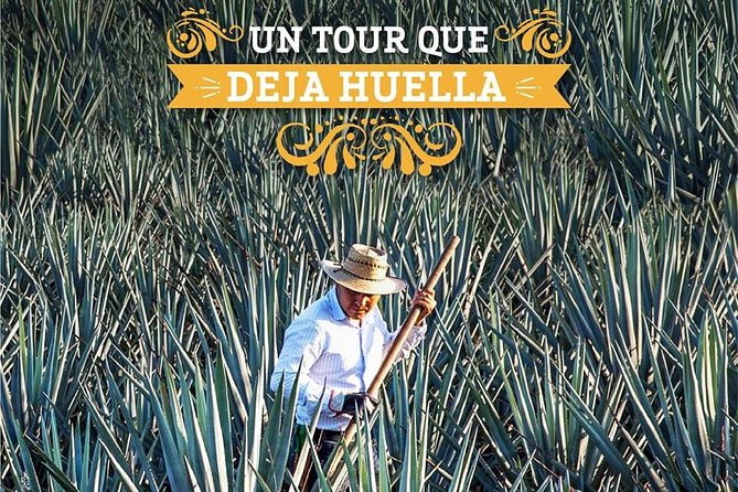 "Tour Casa Sauza ""EXPERIENCIA TEQUILENSE"""