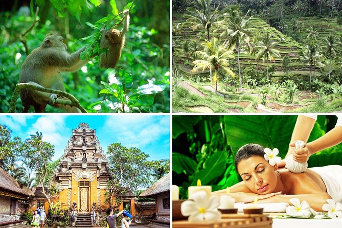Bali Spa and Ubud Full Day Tour