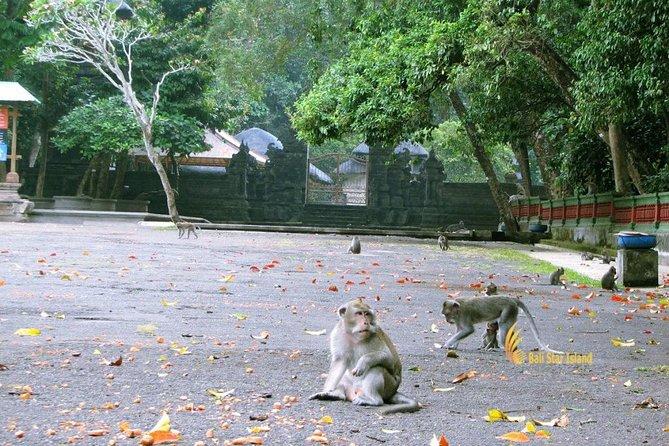 Bali Half-Day TANAH LOT SUNSET, Taman Ayun Mengwi, Monkey Forest, Dinner