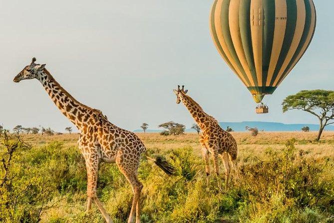 4 Days Lake Manyara, Serengeti and Ngorongoro Safari