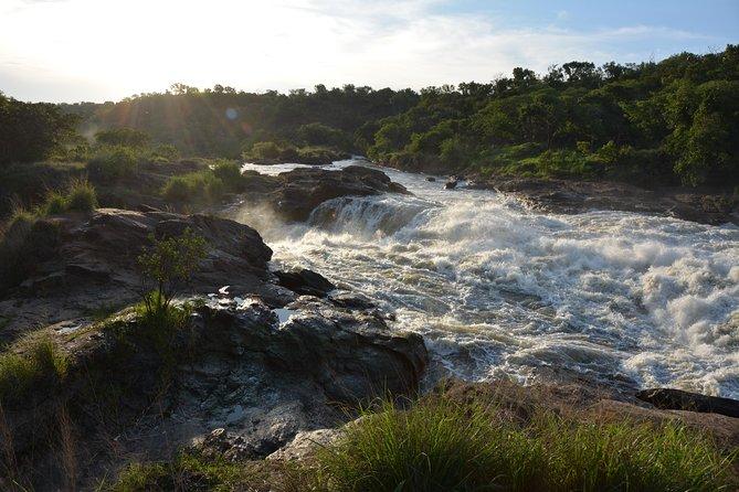 Murchison Falls National Park.( Kabalega)