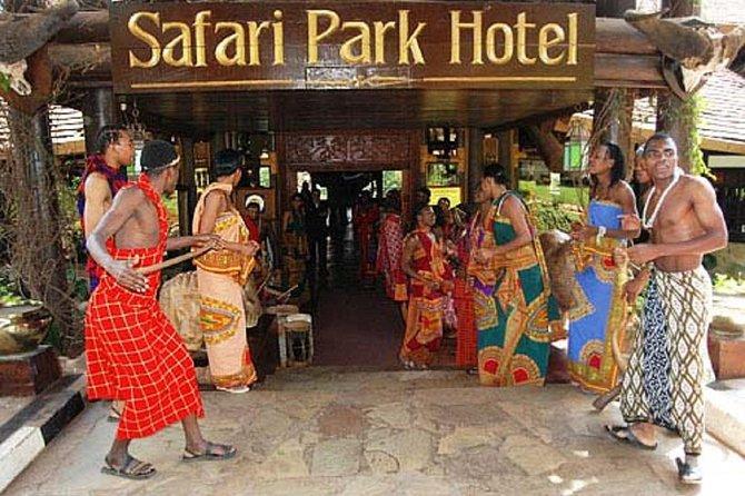 Nairobi dinner and safari cat dancers