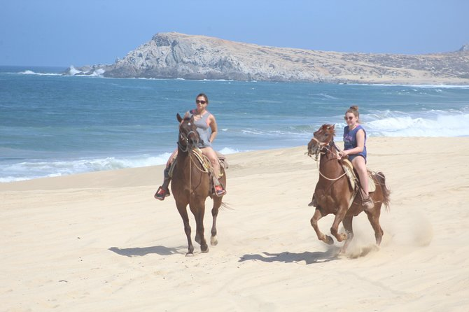 Cabo white sand horseback adventure photo 1