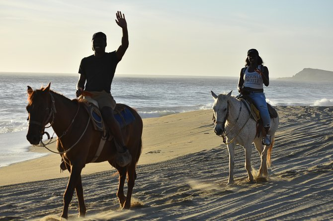 Cabo white sand horseback adventure photo 27