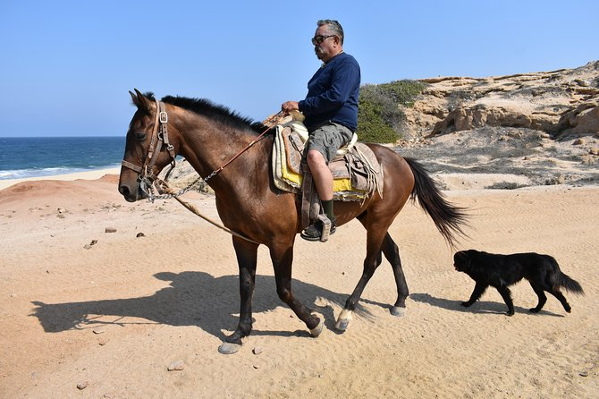 Cabo white sand horseback adventure photo 9