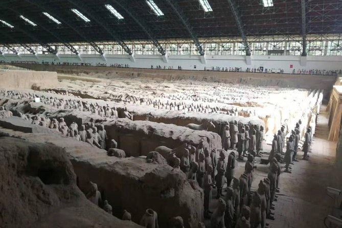 Private Half Day Tour to Terracotta Warriors with Tour guide