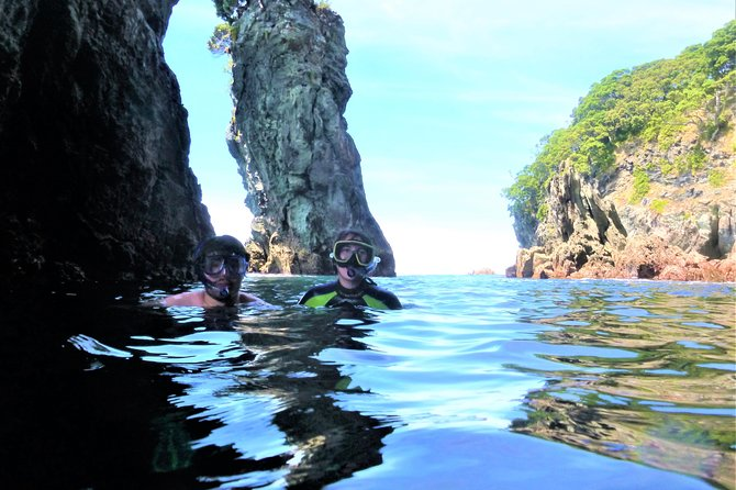 Island Snorkeling and Wildlife Boat Cruise photo 3