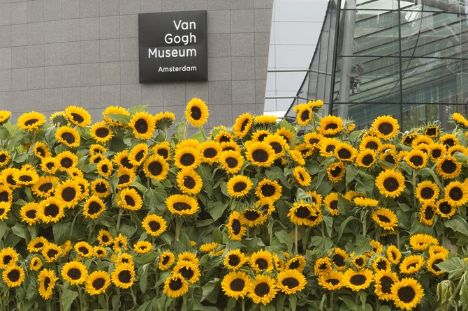 Skip-the-line - Private Guided Tour of Van Gogh Museum Amsterdam photo 4