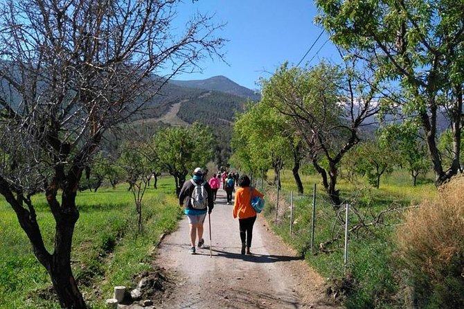 Sierra de Aracena: Grotto of Wonders, hiking and ecological picnic.