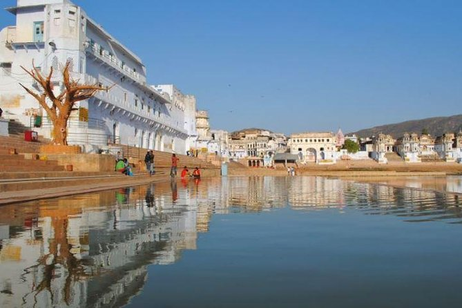 Same Day Tour To Pushkar From Jodhpur with Private Transports