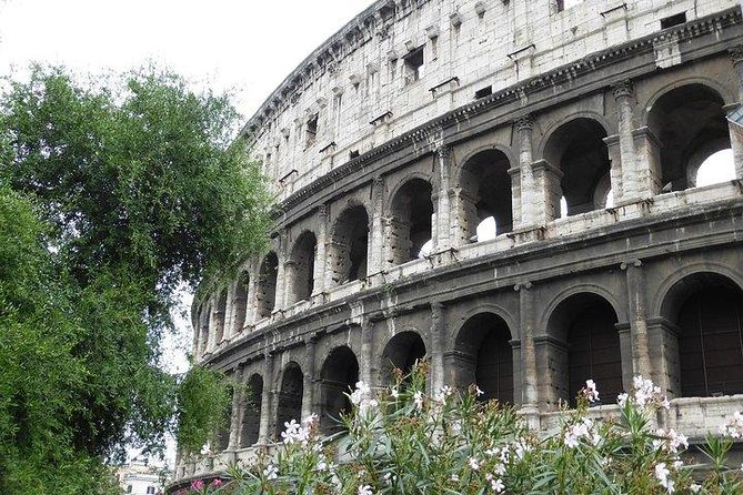 COLOSSEO guided experience completed by Palatine hill & Roman Forum photo 4
