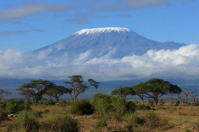 Machame 6 Days Kilimanjaro Climb
