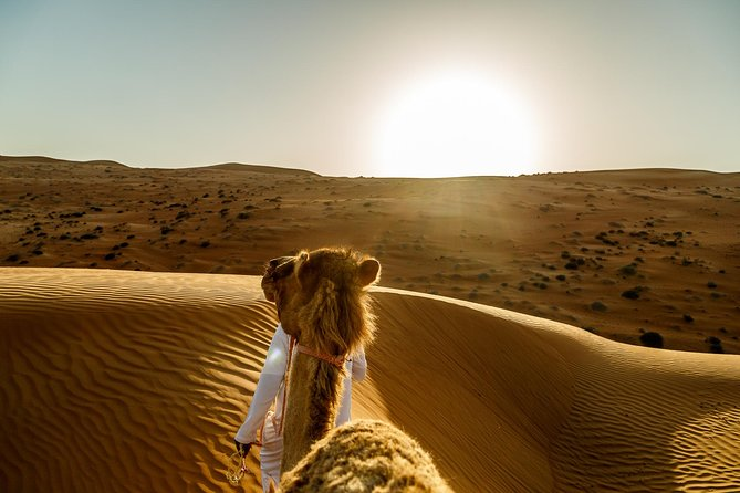 Wahiba Sands&Wadi Bani Khalid desert Safari(Muscat tours) :Outdoor activity