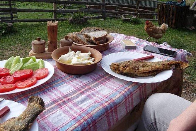Cheese farm tour in the katun