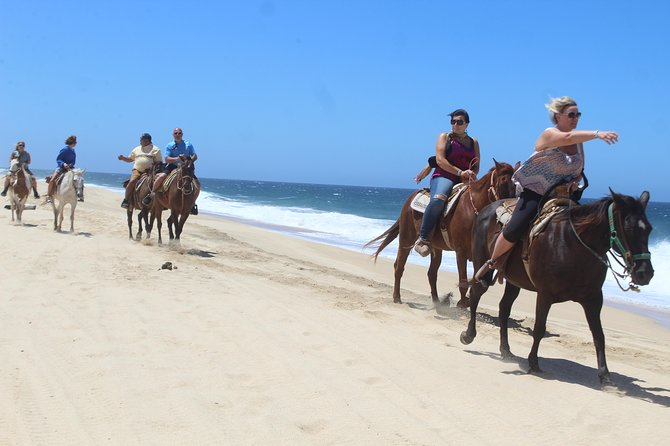 Cabo white sand horseback adventure photo 4