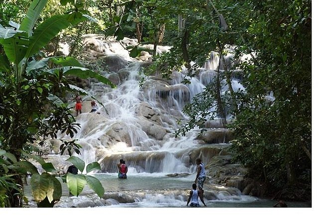 Dunns River Fall Tour from Montego Bay Port/Hotels