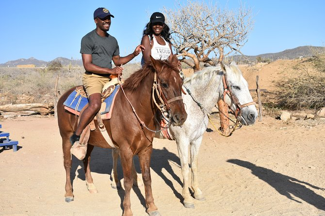 Cabo white sand horseback adventure photo 23