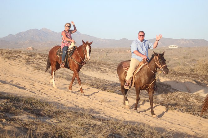 Cabo white sand horseback adventure photo 19