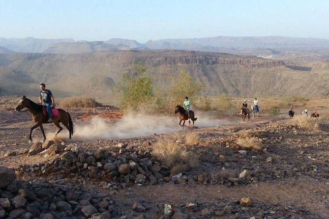 The Best Horse Riding Experience in Gran Canaria (2 hours) photo 6