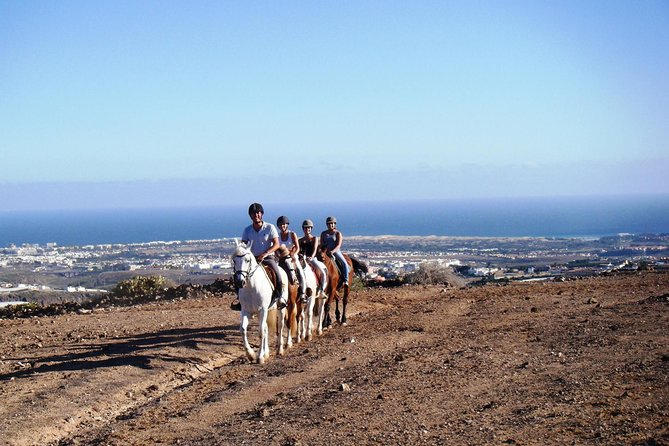The Best Horse Riding Experience in Gran Canaria (2 hours) photo 3