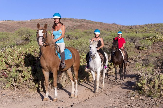 The Best Horse Riding Experience in Gran Canaria (2 hours) photo 4