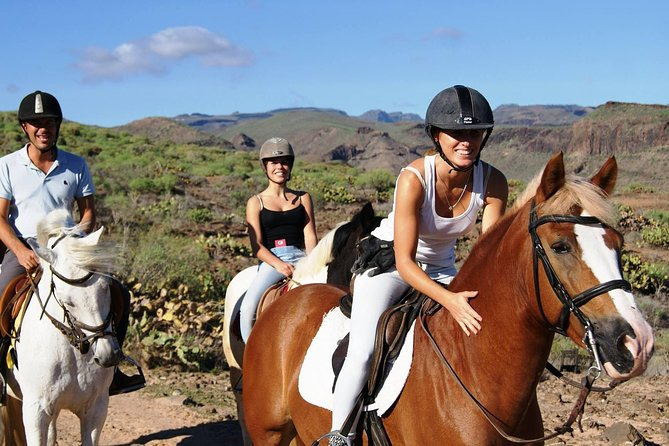 The Best Horse Riding Experience in Gran Canaria (2 hours) photo 1