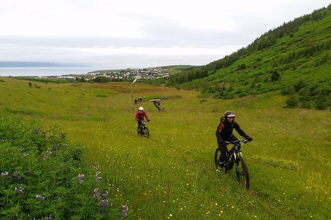 Reykjaheiði Mountain Bike Tour