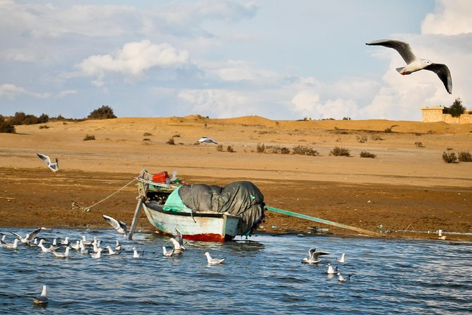 Private tour to Al-Fayoum Oasis from Cairo