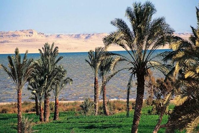 Private tour to Al-Fayoum Oasis from Cairo photo 4