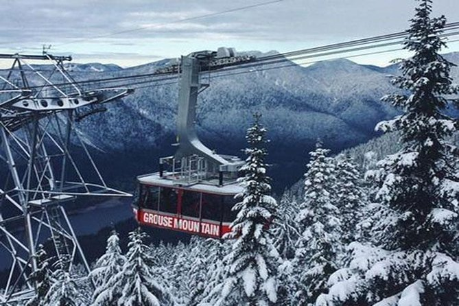 Vancouver Perfect Day Tour Grouse Mountain`& Capilano Suspention Bridge Private