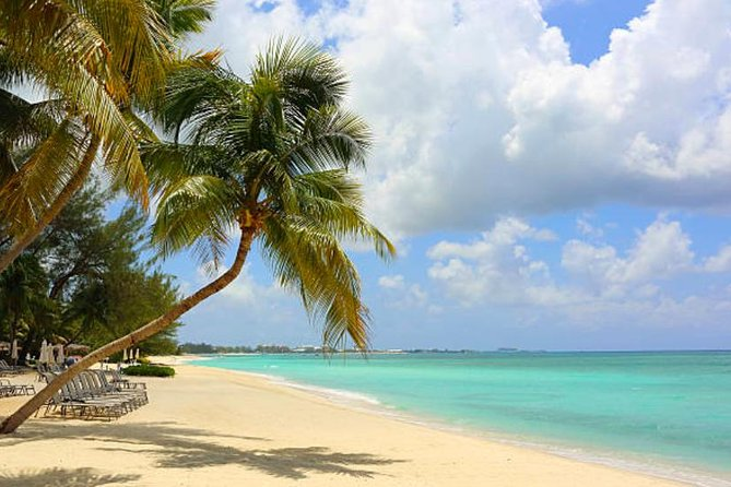 Shore Excursion: Grand Cayman Beach & Off The Beaten Track Tour