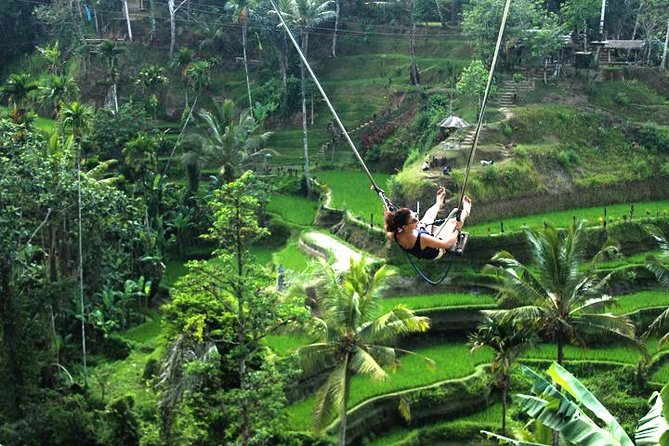 Ubud Day Trip and Tanah Lot