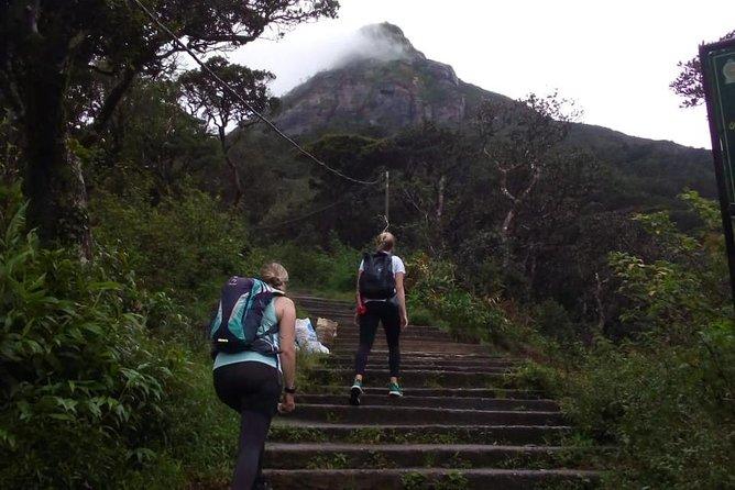 Full moon pilgrimage up the sacred mountain – Adam's Peak