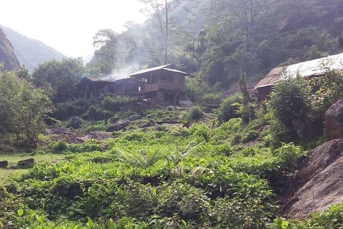 Kanchenjunga South and North Base camp Trekking 25 Days
