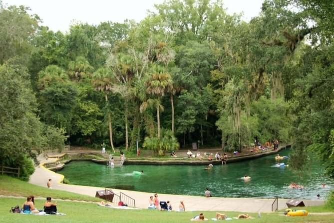 Wekiwa Springs Day Trip with Transportation from Orlando