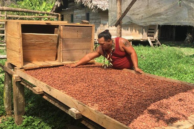 Visit a chocolate factory that still makes traditional chocolate