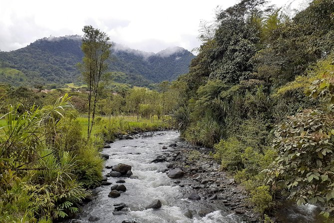 Private Tour to Mindo Cloud Forest & Adventure photo 30