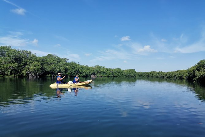 Kayak Tour in Laguna Nichupte Cancun