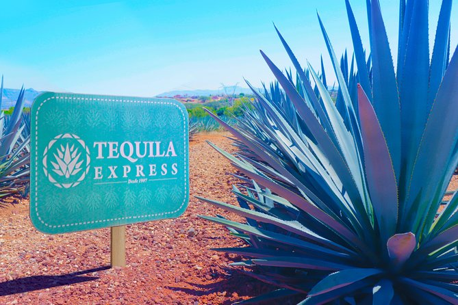 Tour Tequila Express photo 1
