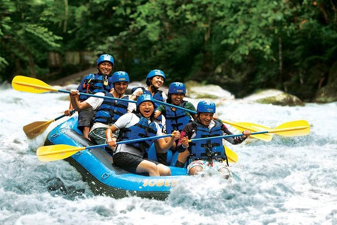 Bali White Water Rafting and Ubud Private Tour