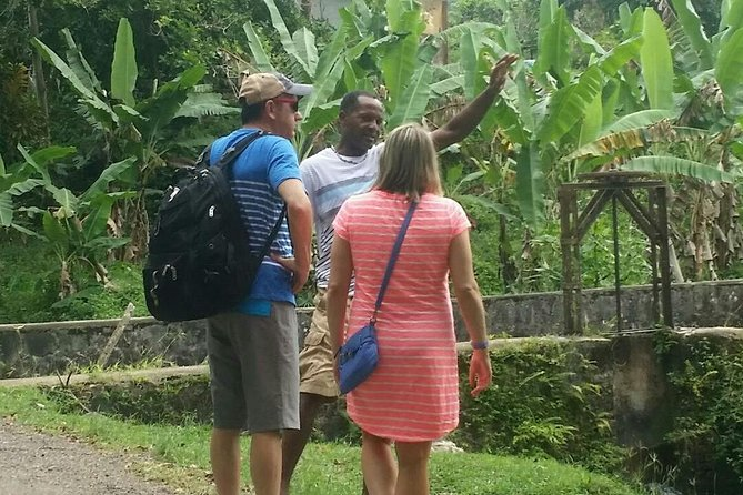 Private Tour of Montego Bay
