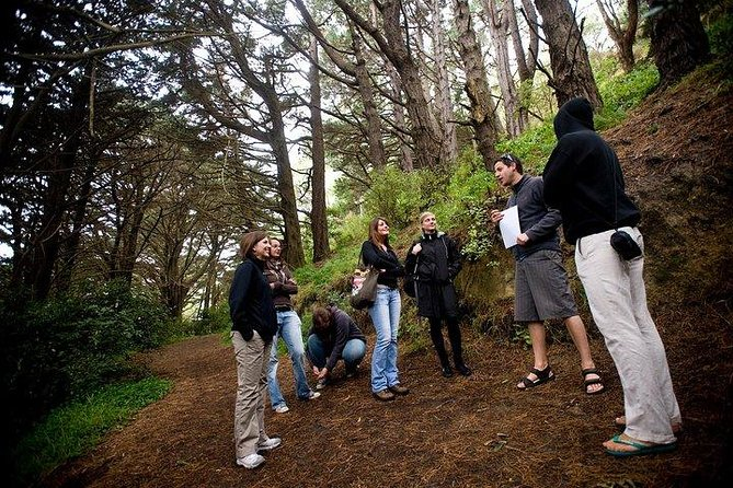 Wellington's Half Day Lord of the Rings Tour (including Weta Tour) photo 4