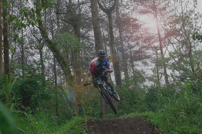 Bike park and Mountain biking Tour in Bali