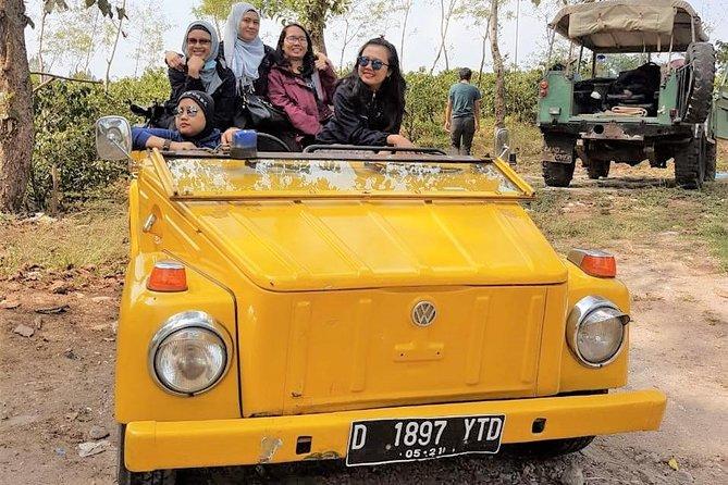 North Bandung with VW Safari: Cherry Farm, Tangkuban Perahu & Dago Dream Park