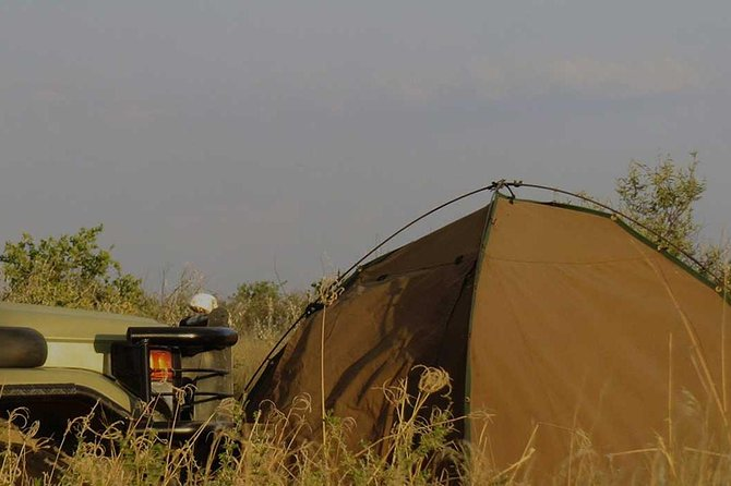 4 Day Tanzania Camping Safari photo 7