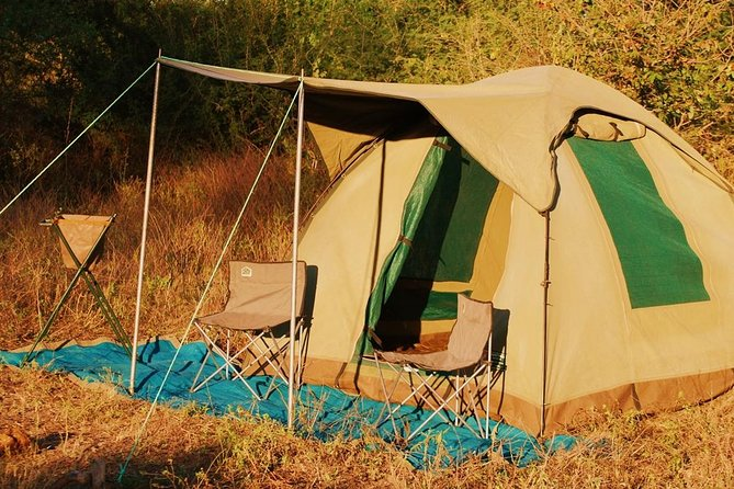 4 Day Tanzania Camping Safari photo 2